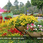 Hoa nở mùa Vu Lan…