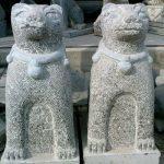 Ý nghĩa biểu tượng con chó trong văn hóa và phong thủy